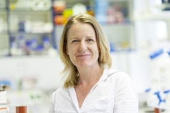 Helen MORRISON, PhD